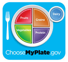 ChooseMyPlate Icon